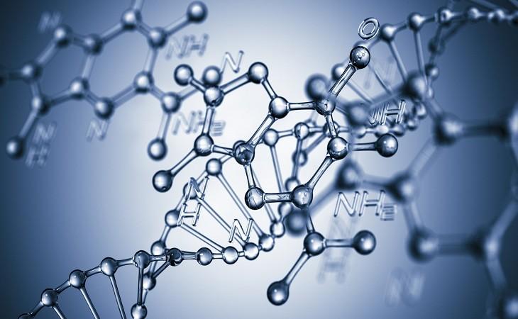 Узнать чей ребенок и провести ДНК экспертизу