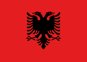 детективное агентство албания